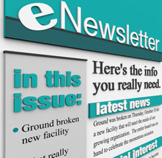 e-newsletter marketing example